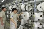 Nhà máy xơ sợi Đình Vũ đang đi đúng trên lộ trình ổn định hiệu quả