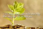 Dối trá, gian manh, độc ác... cũng chỉ vì tiền