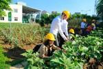 Những nỗ lực bảo vệ môi trường tại Ajinomoto Việt Nam