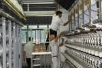 Nhà máy Xơ sợi Đình Vũ nâng gấp đôi công suất sản xuất sợi DTY