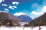 Khởi động mùa đông ấm áp khi đến với Nikko