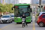 Xả rác bữa bãi, tham gia giao thông vô tổ chức và ý thức nơi công cộng
