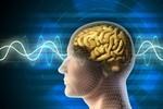 Sử dụng nhiều ngôn ngữ giúp bộ não nhanh nhạy và thông minh hơn