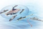 Tàu sân bay Liêu Ninh chỉ là bia mục tiêu đơn giản của tàu chiến Mỹ