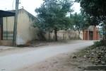 Nữ sinh lớp 11 bị đâm chết trên đường đi học về