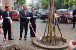 Đại học Fullbright Việt Nam sẽ sớm vận hành