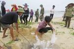Miễn giảm học phí cho gia đình bị ảnh hưởng bởi cá chết ở miền Trung