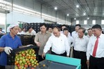 Cần giải gấp bài toán thị trường xuất khẩu cho doanh nghiệp Việt