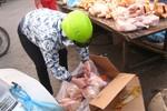 Trước dịch cúm H7N9: Gà đông lạnh vẫn bán tràn lan trong chợ