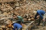TP.HCM số vụ tai nạn lao độngchết người gia tăng