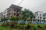Sở Xây dựng Hà Nội mới chỉ nghe nói, chưa thấy chỉ đạo gì của Chính phủ