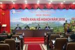 Tổng Công ty Truyền tải điện quốc gia đang làm gì để lọt vào top 10 châu Á?