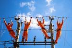Sức sống mùa xuân trên những công trình của Công ty truyền tải điện Quốc gia