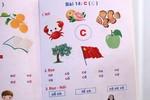 Sách học vần tiếng Việt lại vẽ cờ Trung Quốc