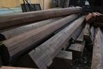 """Chuyện """"gỗ lạ"""" ở nhà dân huyện Phước Sơn, Quảng Nam"""