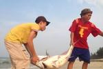 9 thợ lặn biển đi khám, 1 người bị nhiễm độc đồng