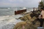 Chuyên gia Pháp tìm nguyên nhân sạt lở biển Cửa Đại - Hội An
