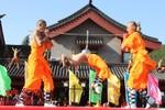 Đại hội Thiếu Lâm thi triển các tuyệt kĩ kungfu