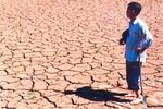 Hậu quả tàn khốc khi nhiệt độ Trái đất tăng thêm 4 độ C