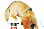 """Trung Quốc: Đòi hàng xóm bồi thường 16 ngàn đô vì """"chó hiếp dâm chó"""""""