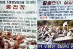 Triều Tiên tạm ngừng rải truyền đơn chống Hàn Quốc