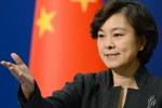 Tân Hoa Xã: Thương mại biên giới Việt - Trung suy giảm nghiêm trọng
