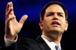 Thượng nghị sĩ gốc Cu Ba tuyên bố tranh cử Tổng thống Mỹ