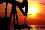 Giá dầu và chính trị