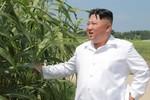 Kim Jong-un vật lộn với nền kinh tế, vòng kim cô Donald Trump phát huy sức mạnh