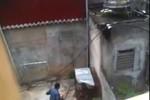 Video: Phẫn nộ với hình ảnh người đàn ông hành hạ dã man con khỉ