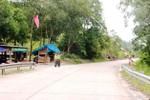 Quảng Bình: Lâm tặc tấn công kiểm lâm và cướp gỗ ngay tại trụ sở