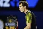 Hạ Federer sau 5 set, Murray tiến vào chung kết Úc mở rộng