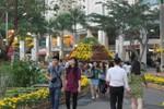 """Cận cảnh """"cung đường thủy sinh"""" giữa lòng thành phố Hồ Chí Minh"""