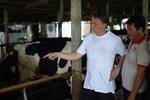 Giao lưu, tập huấn kỹ thuật chăn nuôi bò sữa giữa nông dân Hà Lan và Việt Nam