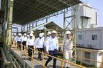 Lãnh đạo PVN kiểm tra tình hình Nhà máy nhiên liệu sinh học Bình Phước
