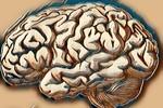 Các triệu chứng, nguyên nhân và phương pháp điều trị bệnh bạch cầu