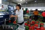 Truy xuất nguồn gốc sản phẩm, hàng hóa quốc gia