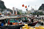 Quảng Ninh: Khoảng 10.000 tàu thuyền về nơi tránh bão an toàn