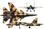 Video tư liệu về mẫu tiêm kích hạng nặng Sukhoi Su-37