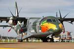 Máy bay vận tải C-295 đắt hàng tại Le Bourget 2013