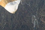Tiêm kích Tornado của Đức rơi, phi công bị treo trên ngọn cây