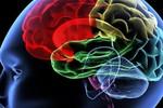 Ngủ ít dẫn tới co rút não, suy giảm nhận thức