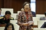 Bà Bùi Thị An: Phải xem lại công tác cán bộ của huyện Phú Xuyên