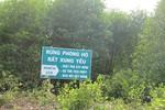 Không khai thác động vật quý hiếm trong rừng phòng hộ là rừng tự nhiên