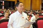 Đại biểu Quốc hội kể chuyện Cao Biền yểm bùa đất sinh đế vương ở Việt Nam