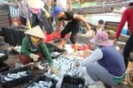 Những chính sách ổn định đời sống của ngư dân miền Trung