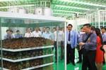 Nhà máy Number One Chu Lai sử dụng công nghệ tiên tiến hàng đầu thế giới