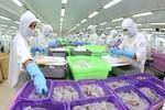 Xuất khẩu thủy sản phải đạt 8-9 tỷ USD vào năm 2020