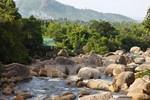 Khôi phục và phát triển rừng bền vững vùng Tây Nguyên