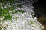 Mưa đá khủng khiếp tàn phá Mường Khương - Lào Cai